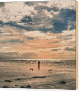 Lonely Couple  Wood Print