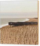Lonely Dune Wood Print