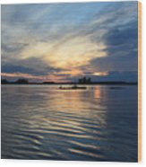 Lonely Goose Sunset Wood Print