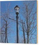 Lonely Lamp Post Wood Print by Deborah MacQuarrie-Haig
