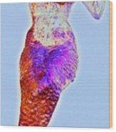 Lonely Little Mermaid Blue Wood Print