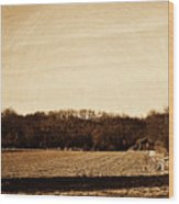 Lonely Old Barn Wood Print