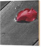Lonely Petal Wood Print