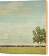 Lonely Tree In Meadow With Vintage Look Wood Print by Sandra Cunningham