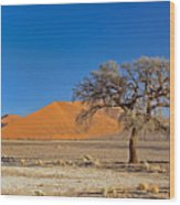 Lonely Tree In Sossusvlei Wood Print