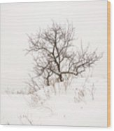Lonely Tree On A Hill Wood Print