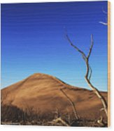 Lonely Bare Tree And Sanddunes Wood Print