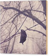 Lonely Winter Leaf Wood Print