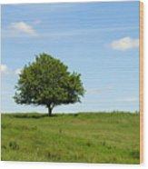 Loner Wood Print