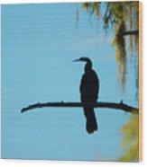 Lonesome Anhinga Wood Print