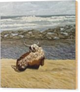 Lonesome Nguni Wood Print