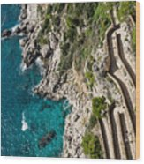 Long And Twisted Walk To The Shore - Azure Magic Of Capri Wood Print