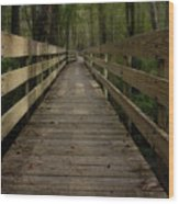 Long Boardwalk Through The Wetlands Wood Print