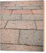 Long Bricked Walks Wood Print