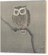 Long-eared Owl On Bare Tree Branch, Ohara Koson, 1900 - 1930 Wood Print