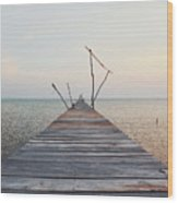 Long, Empty And Old Wooden Dock Over The Water At Sunset Wood Print
