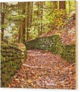 Long Fall Walk  Wood Print