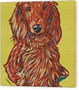 Long Haired Dachshund Wood Print