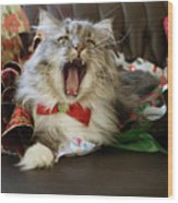 Long Haired Grey And White A Cat Yawns Amid Christmas Wrapping Paper Wood Print