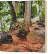 Long Journey Of A Tortoise Wood Print