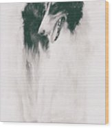 long-legged beauty Russian hound Wood Print