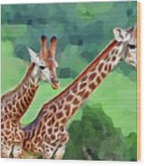 Long Necked Giraffes 2 Wood Print