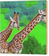 Long Necked Giraffes 3 Wood Print