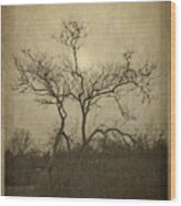 Long Pasture Wildlife Perserve. Wood Print