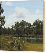 Long Pine Key Wood Print