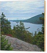 Long Pond Wood Print