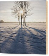 Long Shadows Wood Print