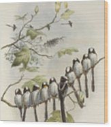 Long-tailed Tit  Wood Print