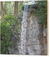 Long Waterfall Drop Wood Print