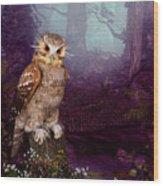 Long Whisker Owl Wood Print