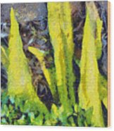 Long Yellow Leaves Wood Print