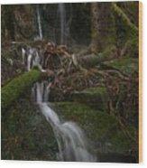 Longexposure Water Wood Print