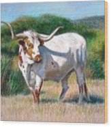 Longhorn Bull Wood Print by Sue Halstenberg