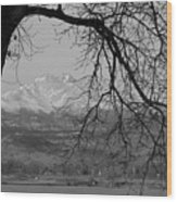 Longs Peak And Mt. Meeker The Twin Peaks Black And White Photo I Wood Print by James BO  Insogna