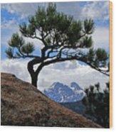 Longs Peak Framed Wood Print