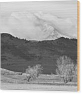 Longs Peak Snow Storm Bw Wood Print