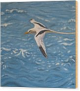Longtail Over Water Wood Print