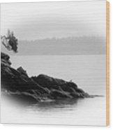 Lonley Gull Wood Print