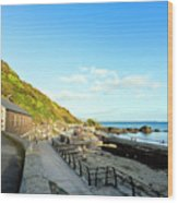 Looe Boathouse Wood Print