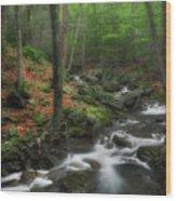 Look Deep Into Nature Wood Print
