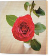 Look Down On A Rose Wood Print