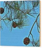 Look Up Wood Print