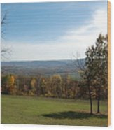 Looking At Fall Colors In The Field Wood Print