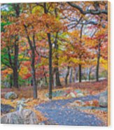 Looking Down A Trail On Bear Mountain New York Wood Print