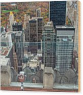 Looking Down At New York Central Park Surounded By Buildings Wood Print