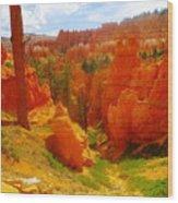 Looking Down In Bryce Wood Print